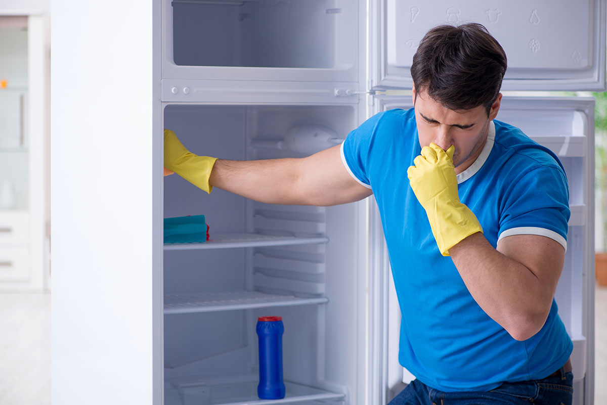 What happens if you don't clean your fridge?