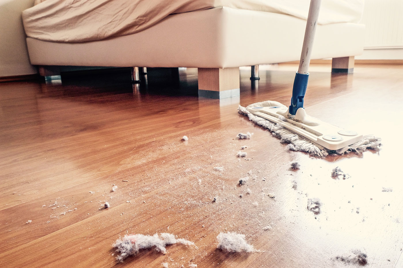 What is the best way to get rid of dust from your home?